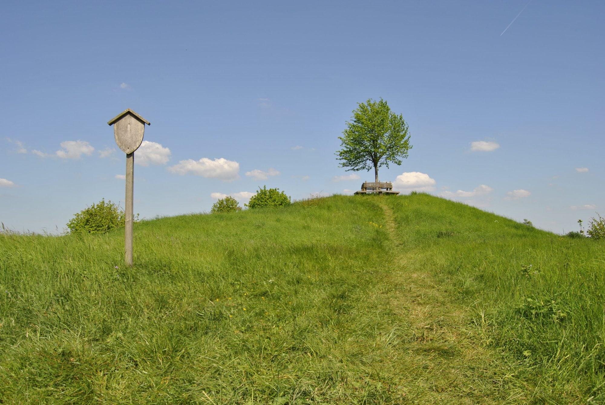 Der Tumulus vor Berklingen  (1)