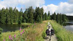 Sommergefühle an der Innerste – eine Tour mit dem Zweirad auf dem Innerste-Radweg