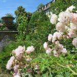 95 Schloss Ringelheim IMG_1921