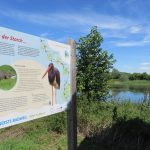 97 Vogelschutzgebiet bei Baddeckenstedt IMG_1954