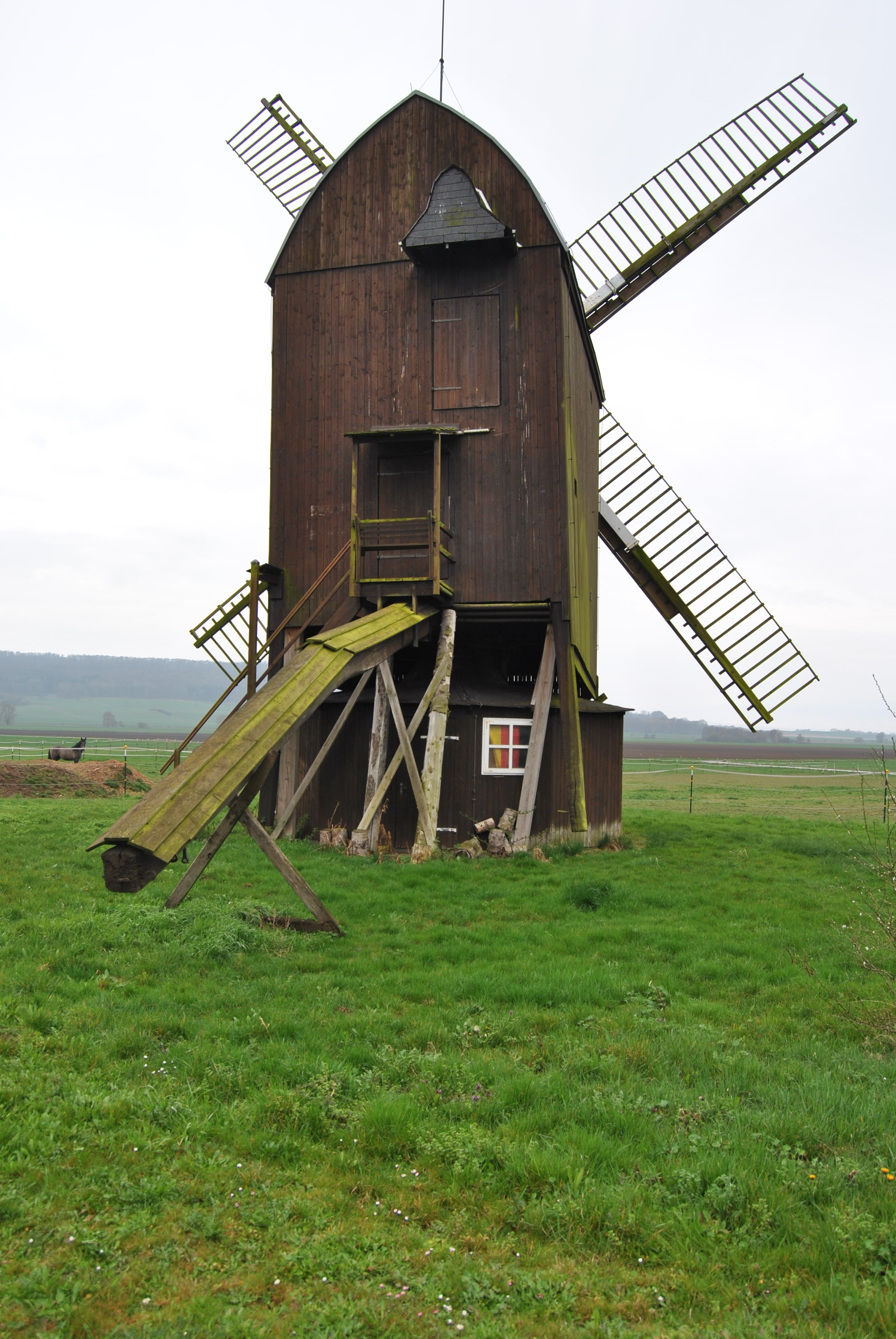 Die Bockwindmühle Dettum  (1)