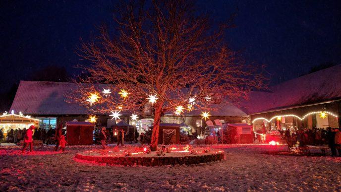 Weihnachtszeit im Nördlichen Harzvorland