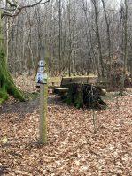 Zum Steinkammergrab und auf den höchsten Gipfel des Elms
