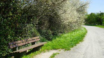 Mit dem Fahrrad durch Lutter am Barenberge