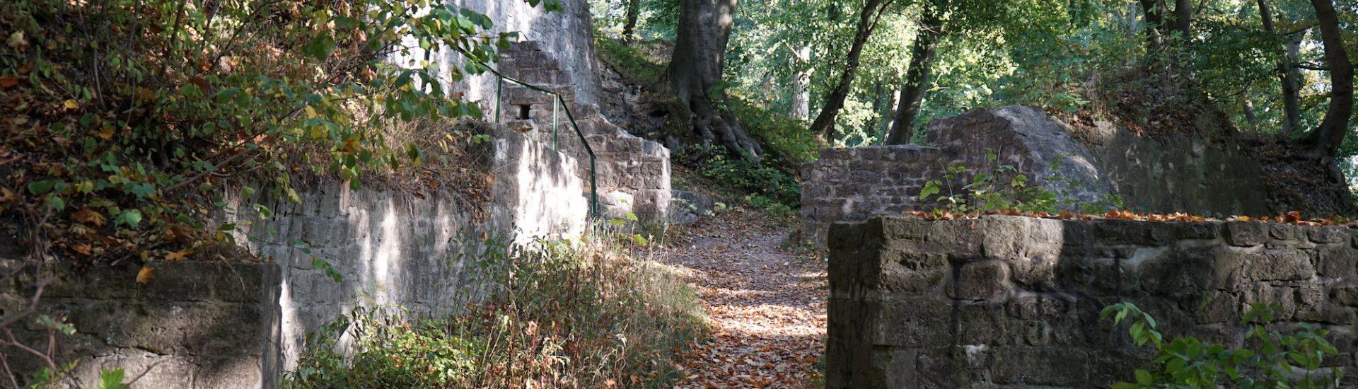 Ruine der mittelalterlichen Asseburg / Beate Ziehres