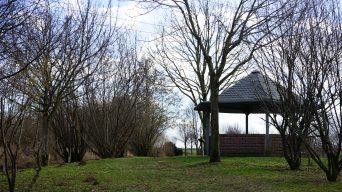Frühlingszeit ist Wanderzeit im Nördlichen Harzvorland: Schulwald Cramme