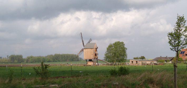 Windmühle auf Steinquadern und einem Eichenholz-Bock