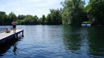 Sommer im Nördlichen Harzvorland: Gewässer zum Verweilen