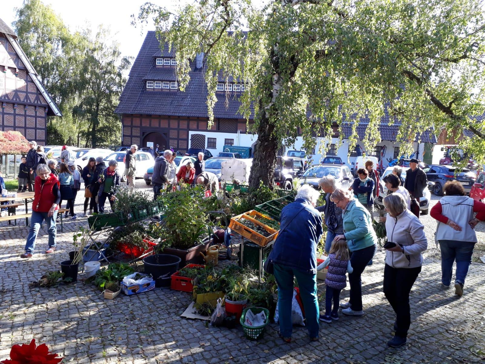 Nördliches Harzvorland: Staudenbörse der Landfrauen auf dem Birkenhof in Goslar / privat