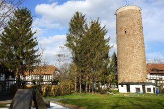 Nördliches Harzvorland, Burg Vienenburg mit Bergfried. Foto: Beate Ziehres
