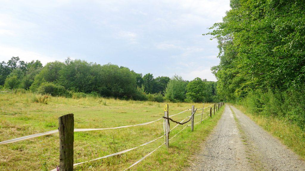 Nördliches Harzvorland, Liebenburg, Wanderweg zur Grube Fortuna. Foto: Beate Ziehres